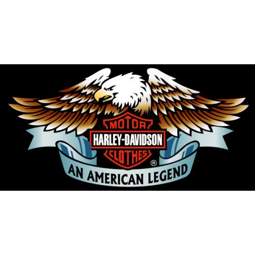 Harley davidson chapter