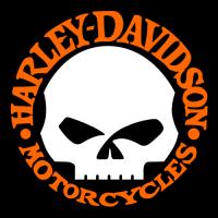 Harley davidson one skull