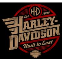 Harley davidson gris