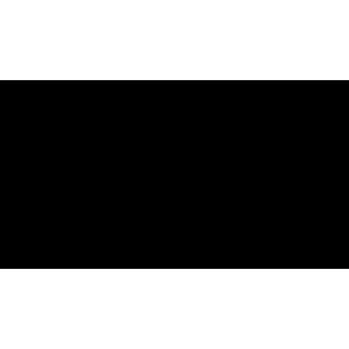 Déco pyramide chameau