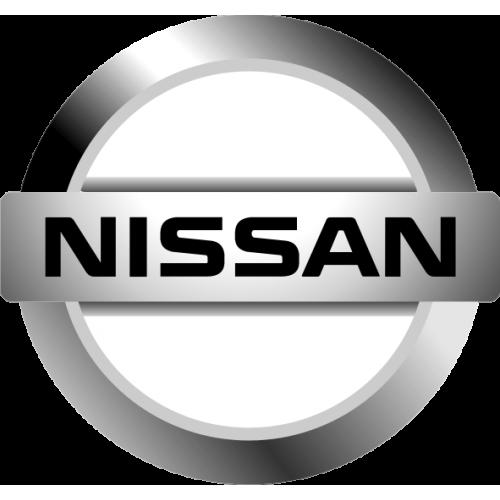 Nissan couleur