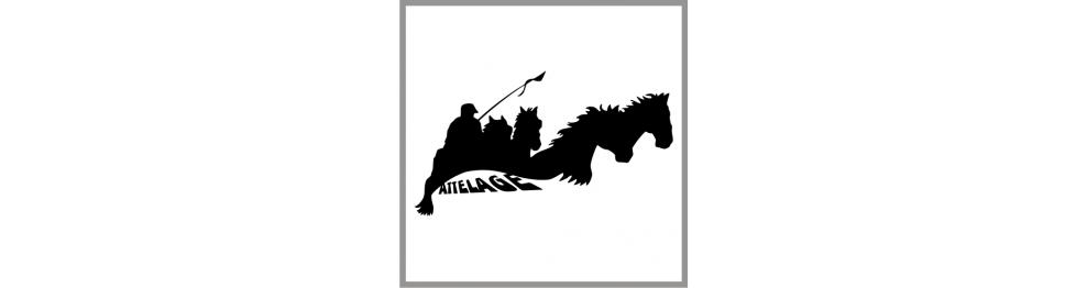 Déco Equestre / Van